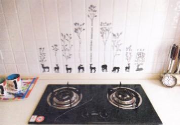 厨房的瓷砖颜色宜以浅色和冷色调为主